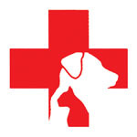Specialist Veterinary Clinics